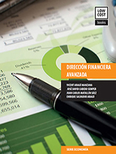Direccion financiera avanzada